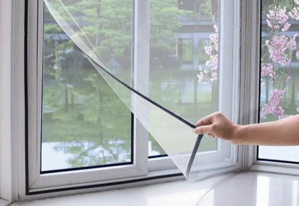mosquito mesh for windows near me